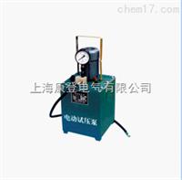 手提式电动试压泵
