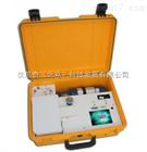 美国DPS CompanionⅡ 型便携气相色谱仪