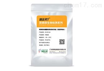 旋达R1™铜绿假单胞菌核酸检测试剂盒