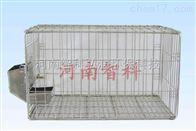 河南智科不锈钢兔笼、干养兔笼、二级兔实验笼