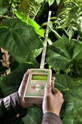 AccuPAR植物冠层分析仪