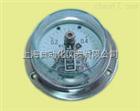 YXC-153BF轴向带边 不锈钢电接点压力表