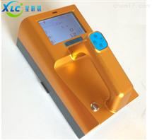 便携式αβ表面污染测量仪FJ-1217G厂家直销
