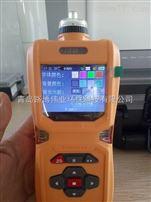 泵吸式六组分的气体检测仪