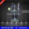 高磞硅玻璃反应器厂家供应SF系列防爆变频调速双层玻璃反应器
