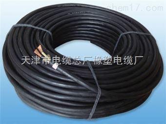 YC-J 3*25+1*10天车电缆