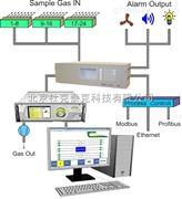 溫室氣體通量在線觀測系統
