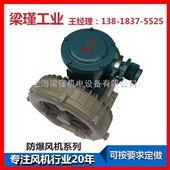 EX-G-3高压防爆鼓风机销售商