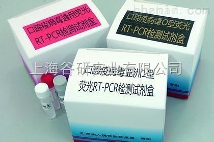 犬瘟热病毒(CDV)核酸检测试剂盒(RT-PCR法)说明书