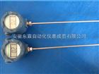 DL WZPL-2316現場顯示溫度計