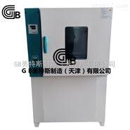 GB热空气老化箱-主要特点