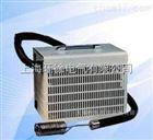 DLYS-105投入式制冷仪