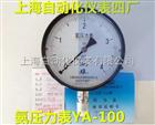 YZA-100真空氨用压力表 0-0.1Mpa