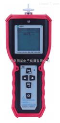 TY2000-D手持式PID检测仪