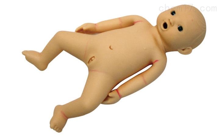 高级婴儿护理模型 妇婴