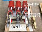 FKN12-12压气式FKRN12-12/630负荷开关实力厂家
