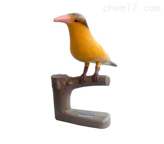 仿真黄鹂 生物模型