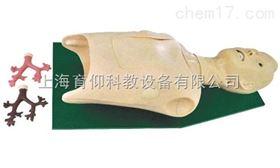 支气管内窥镜训练模型|临床诊断实训模型