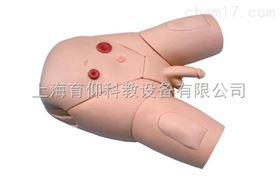 女性导尿示教模型|护理训练模型