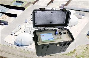 便携式多组份沼气分析仪