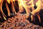 ISO871塑料热空气炉法点着温度测定仪
