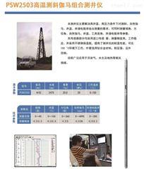 PSW2503高温测斜伽马组合测井仪
