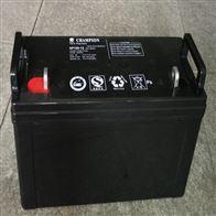 *蓄电池NP100-12