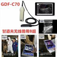 GDF-K8高清羊用B超價格多少錢