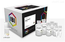 IB47281gMAX Genomic DNA Mini 試劑盒
