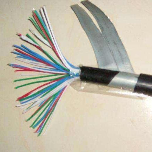 国标天联绝缘屏蔽控制电缆