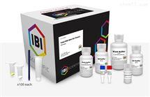 IB47302組織總RNA提取試劑盒