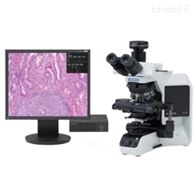 奥林巴斯BX43生物显微镜使用说明