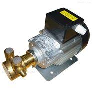 单相245W黄铜旋转叶片泵-进口电机配置