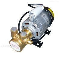 PR120W进口Rpm电机配套旋转叶片泵