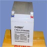 CH.GREAT蓄电池6-FM-100参数及规格