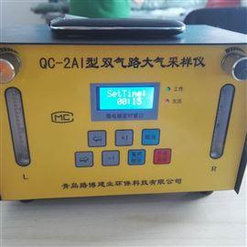 QC-2AI经济实用型双气路大气采样器
