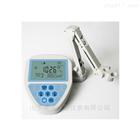 ION-418台式水质离子计