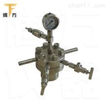 上海简易型高压反应釜厂家