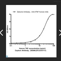 Anti-TNF-a antibody--STJ99202