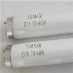 D75灯管