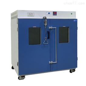 DLG系列非标订制对开门高温干燥箱
