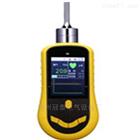 彩屏泵吸式硫化氢检测仪
