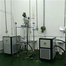 RF-5-100L固相合成多肽反应釜