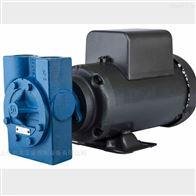 DXS.38EEET1NN00000优势供应Tuthill润滑泵Tuthill耦合泵