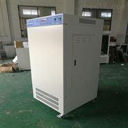 河北 MGC-300(E)型光照培養箱