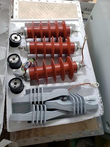 10KV线路避雷器HY5WS-17/50