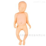 KAC/FT1足月胎儿模型