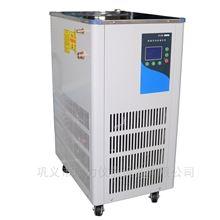 DLSB低温恒温冷却液循环泵