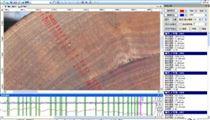 NL-A年輪分析儀