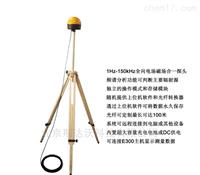 低频电磁场在线监测系统EMS-150